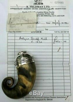 Antique SCOTTISH 1820 RAM HORN & SILVER SNUFF MULL BOX